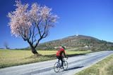 biker in spring-2a poster