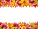 Fototapety flower frame 3