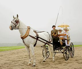 horse and a old-fashioned horse-drawn 1