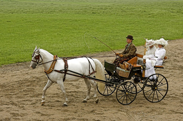 old-fashioned horse-drawn