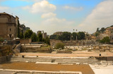 view of the ancient forum in rome poster