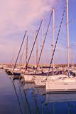 sailboats anchored at port poster