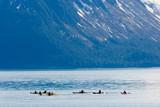 kayakers in alaska poster