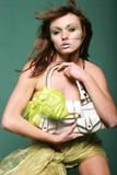 sexy woman with handbag poster