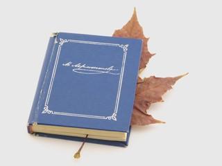 blue book wuty leaf on white