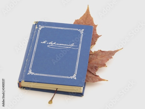blue book wuty leaf on white