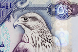 uae currency - 500 dirham note closeup poster