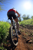 Fototapety mountain biking