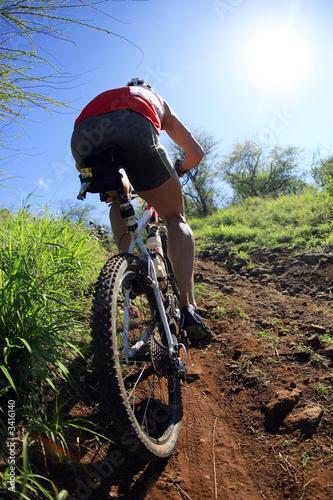 Poster mountain biking