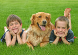 boys and golden retriever