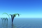 blue landscape. ocean and plants poster
