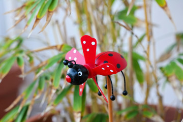 lady bug pin wheel