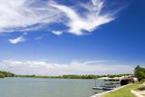mangrove swamp coastline poster