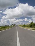 tuscan road poster