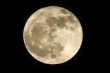 luna llena - 3449130