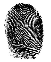 fingerprint - index finger