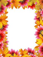 "Постер, картина, фотообои ""flower frame vertical"""