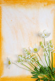 Spring flowers on watercolor background poster