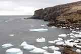 bay de verde, newfoundland icebergs poster