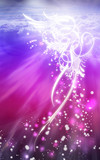 Fototapety anglesky lila