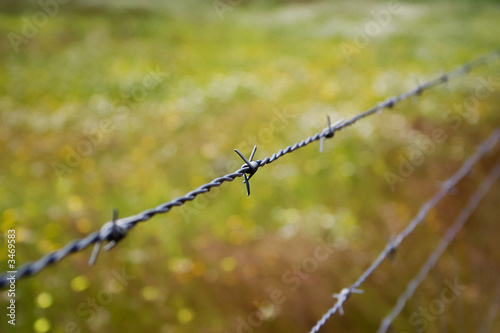 barbed_wire_02