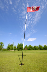 golf flag no. 14.