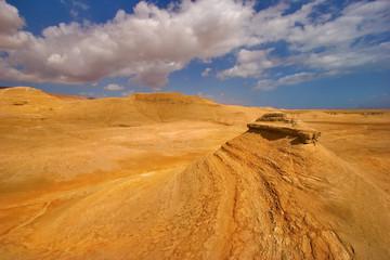 in the autumn in desert