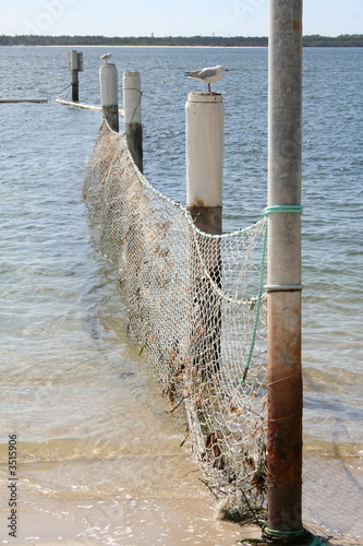 ocean baths (swimming area) netting