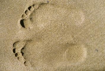 footsteps of love