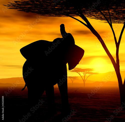 Leinwanddruck Bild african spirit ii