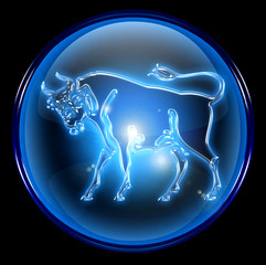 taurus zodiac button icon