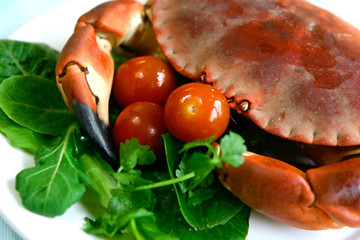 Freshly steamed crab served on fresh salad and tomatoes