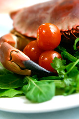 Freshly steamed crab served on fresh green salad and tomatoes