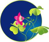 Four-leaved clover, symbol of luck . Vector illustration poster