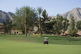 Palm Springs Golf Course 4