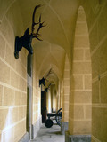 Gothic castle courtyard with canon, deer heads and lancets poster