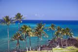 Azure Hawaiian Snorkeling Beach on Kona Island poster