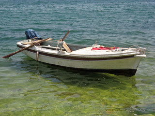 boat with paddles