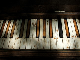 Battered piano keyboard sitting outside in dappled light