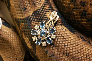 Brown snake with modern jewelrys