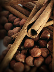 cinnamon and hazel nuts