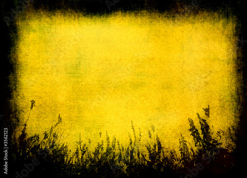 canvas print picture grunge texture - perfect background with space for text