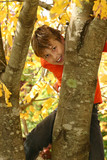 Boy climbs a tree, its trunk covered in lichens during Autumn