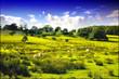 summer meadow england