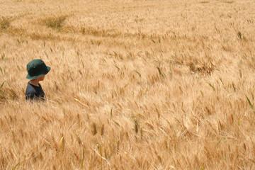 L'enfant dans le champs