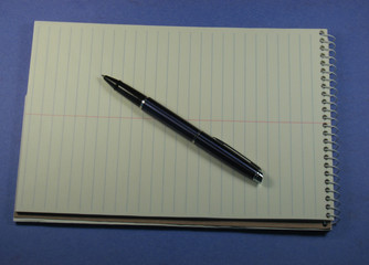 Pen and open steno pad, lots of space for your text