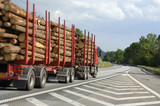 timber truck on the go poster