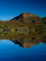 tenerife mountains vegetation with artificial lake