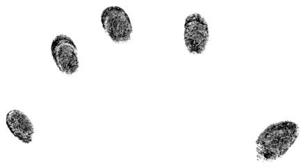 5 individual fingerprints (Vector Format)