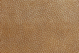 Top Grain Leather Background Pattern  poster